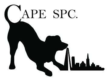 CAPE SPC: Exhibiting at Hotel 360 Expo